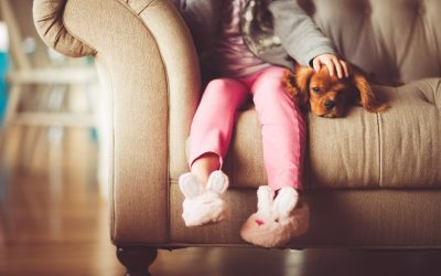 Pet Trusts – Plan for your furry loved ones